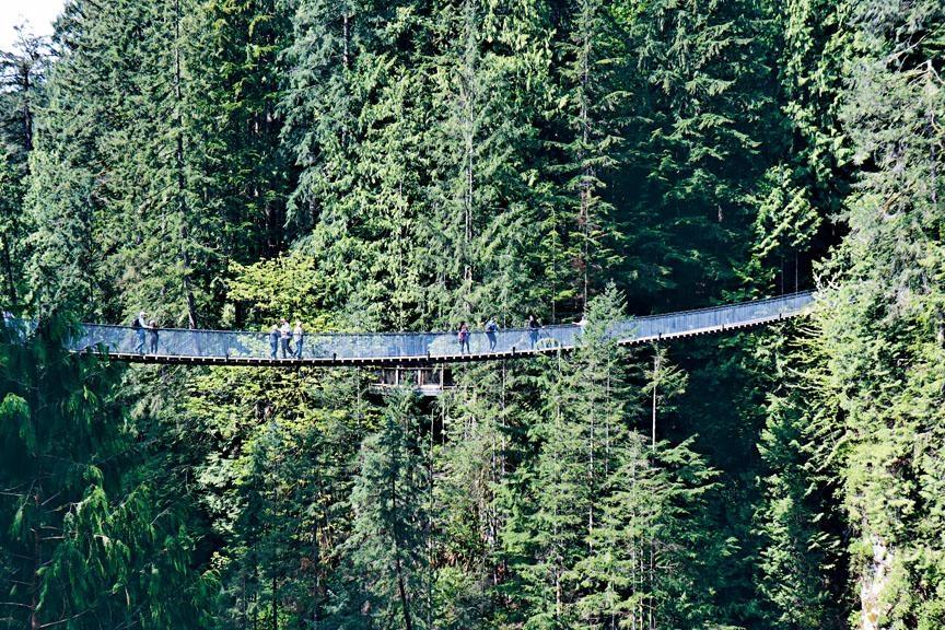 ●長吊橋惹來不少遊客特意到來挑戰。