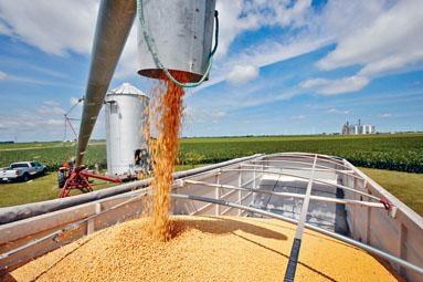 ■受貿易戰影響,美國大豆滯銷,華府出手補貼。