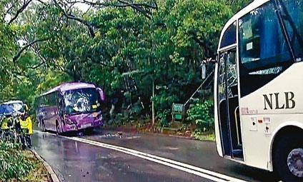 ■旅巴(左)與嶼巴迎撼,兩車同告損毀。