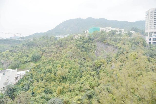 ■單位享有開揚的筆架山山景,綠意盎然。