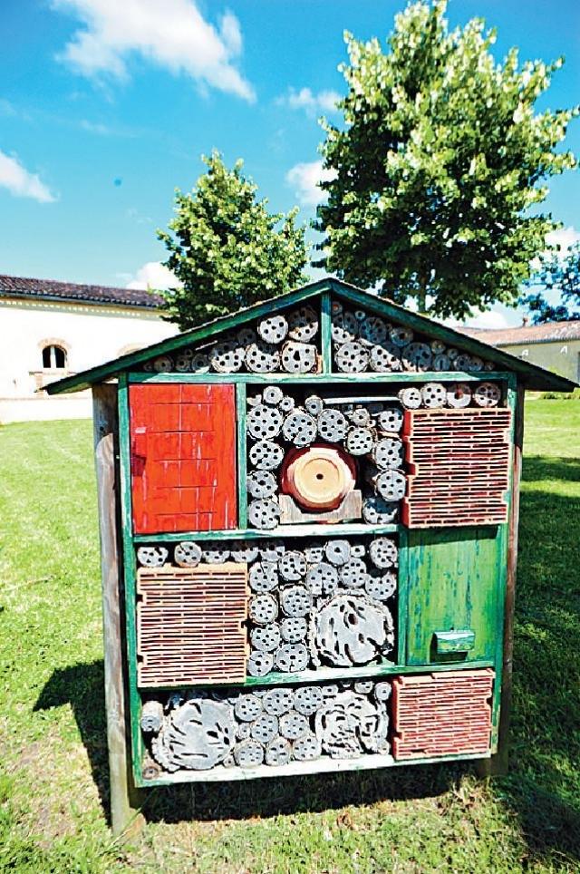 ■在花園範圍內的「昆蟲酒店」。