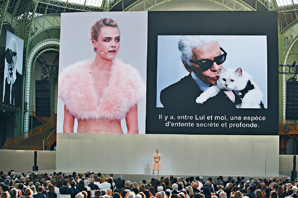 ■Cara上台讀出詩句時,熒幕顯示Karl與愛貓的合照。