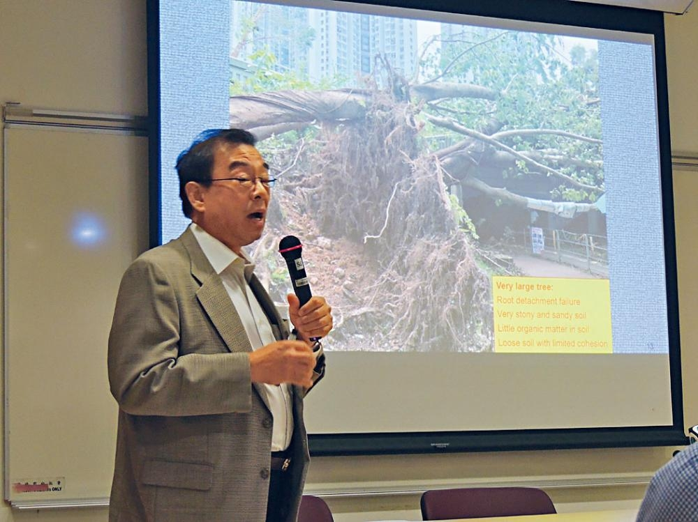 詹志勇認為本港須改善種樹方法,否則再遇颱風只會重演塌樹。