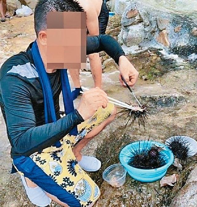 海下灣捕食海膽  網民被轟教壞人