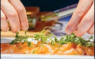 Executive日記——挪威漁業改良魚糧保證無蟲  認住海鮮標誌食安全三文魚