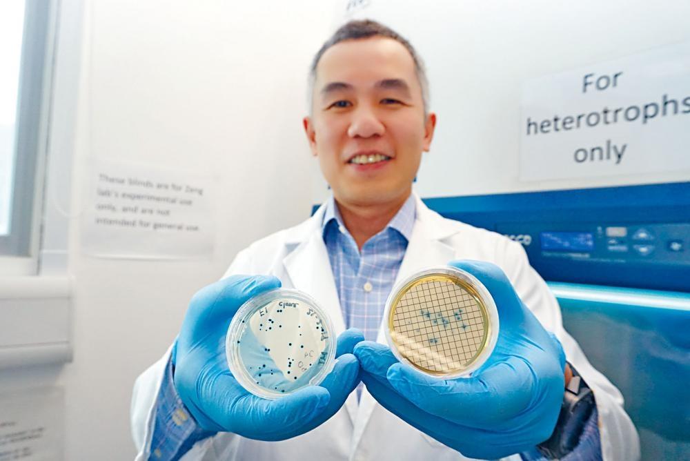 科大海洋科學系副教授劉振鈞發現,本港水域常見的「大腸桿菌」實際為近親二型,相信研究有助監測水質。