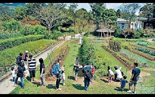 Executive日記——西貢酒店推家庭度假住宿  夏日親子體驗坐舢舨野外研習