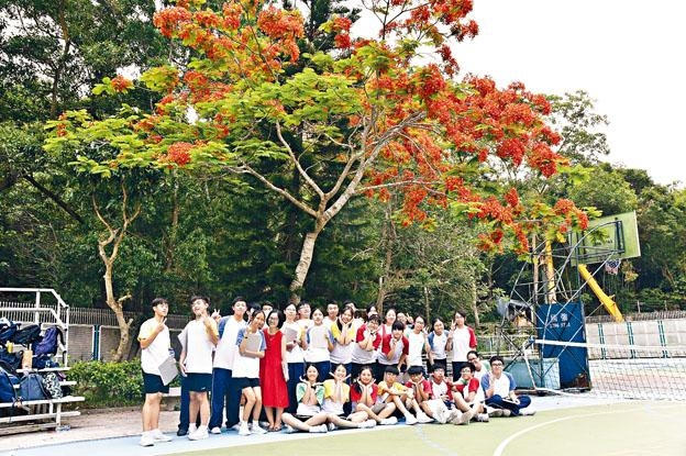 筆者與學生合攝於鳳凰木下。