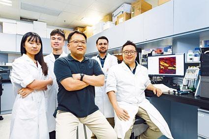 潘基沅(中)率領城大研究團隊,首次綜合研究兩種幹細胞對心臟修復的效能。
