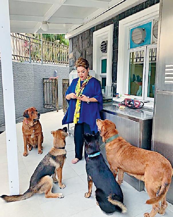 湊狗為樂 ■肥媽好享受家庭樂,亦愛分享跟家中愛犬的生活點滴。