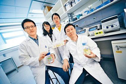 曾慶璐(前右)的研究團隊,證實噬藻體病毒是殺死於海洋裏提供氧氣的藍綠藻,新發現有望提升海洋清除二氧化碳的能力。
