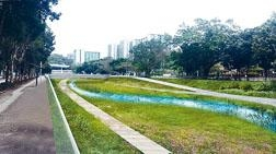 大圍明渠將提供親水設計的河道,「上游以生態為本,下游讓居民享用」。