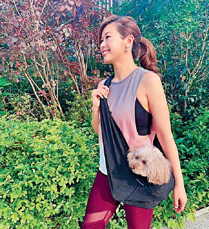 ■趙希洛預告愛犬Chloe亦有份客串《金宵大廈》。