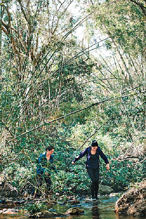 ■由於拍攝期間遇上颱風山竹,令不少樹林的樹木斷掉,增加拍攝難度。